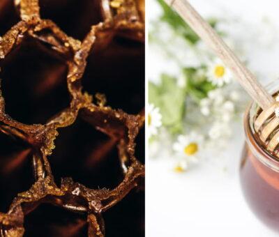 Bahrain Honey Brands
