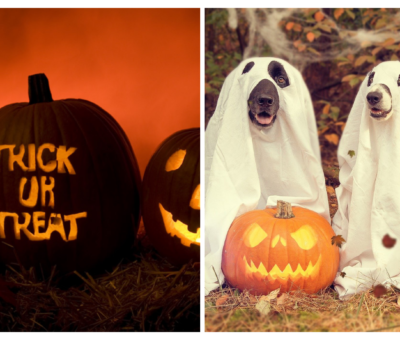 Halloween 8 Spots